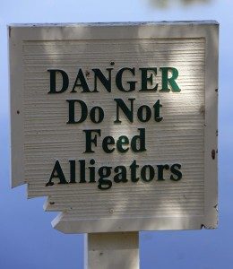 A sign in Orlando, warning you not to feed the alligators, which, when you think about it, doesn't NOT feeding them only make them hungrier and more desperate...?